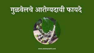 गुळवेलाचे फायदे व नुकसान, Gulvel benefits in Marathi